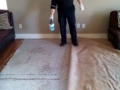 The Carpet Cleaning Expert
