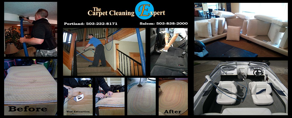 Welcome To The Carpet Cleaning Expert